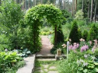 Садовая арка — 140 фото и видео описание как украсить участок садовыми арками