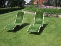 Красивый газон на участке — выбор сорта и советы по оформлению газона (125 фото + видео)
