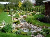 Озеленение участка — описание вариантов дизайна и стильные идеи оформления участков (135 фото)